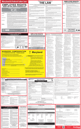 Maryland and Federal Laminated Combined Poster